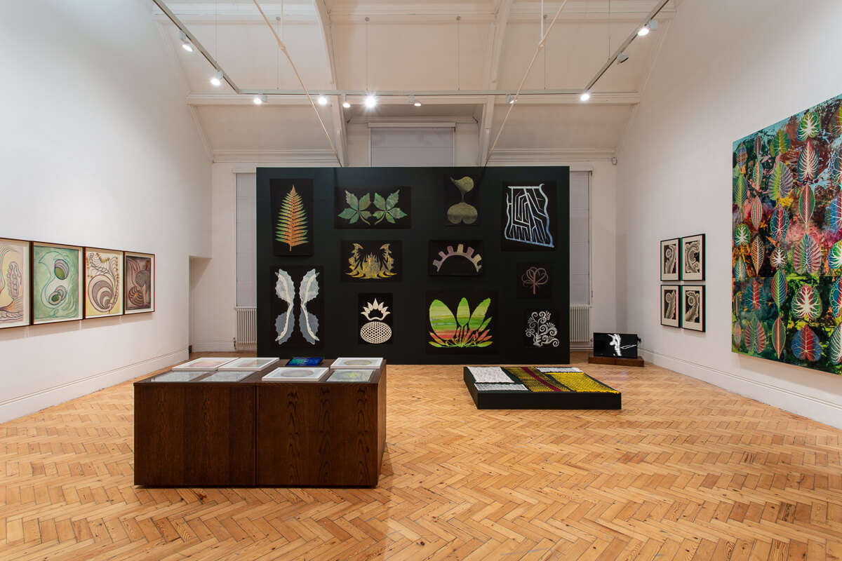 The Botanical Mind - Exhibition at Camden Arts Centre in London. Gallery View 1.